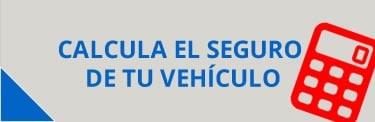 calcula-el-seguro-de-vehiculo en salvador andreu