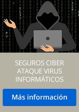 seguros ataques informáticos